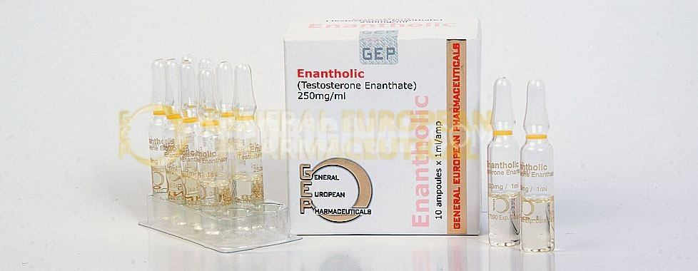 enantholic тестостерон енатат